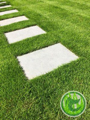 Royal Grass installation
