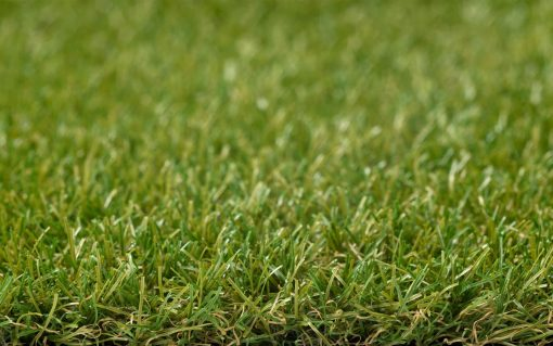 Royal Grass Wave